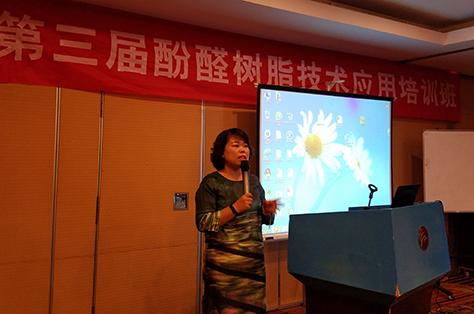 全国酚醛材料产业发展中心主任刘雷女士