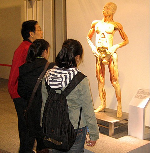 中国旅游产业-北京举办大型生命奥秘展览