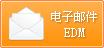电子邮件 EDM