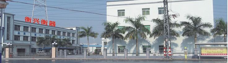 东莞衡兴衡器有限公司