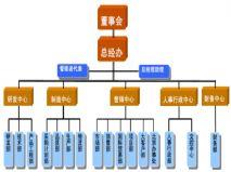 双软企业――组织结构