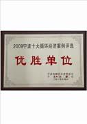 烟台万华——企业荣誉