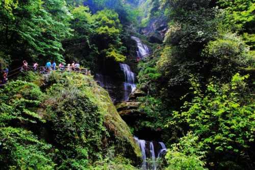 中国旅游产业-碧峰峡藏在地下的森林峡谷