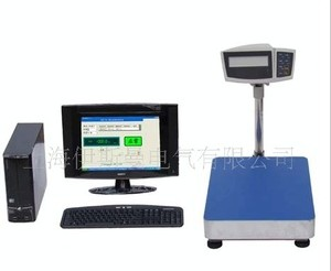 供应优质静态重量检测系统,称重机系统