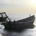 现代渔业有限公司揭牌成立
