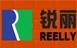 深圳市锐丽创科技有限公司