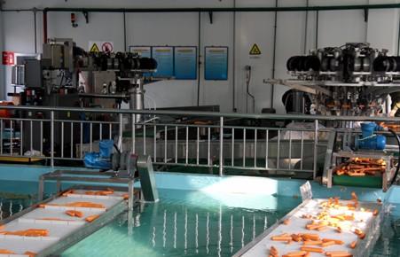 JWL-III型高温敏化连续化生产线