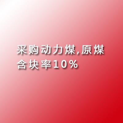 采购动力煤,原煤,含块率10%