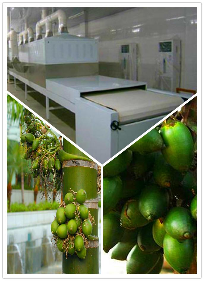 湖南槟榔微波膨化干燥杀菌设备