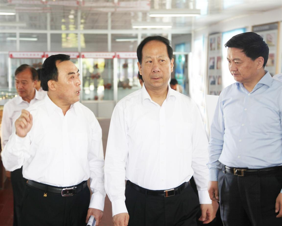 江苏省委副书记石泰峰在凤灵集团调研工作