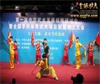 首届中华武术发展战略研讨会在京举行