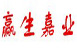 北京赢生嘉业科技发展有限公司