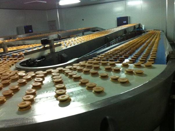 上海烘焙输送机厂家有哪些?看看YA-VA大型蛋糕网带输送机厂你就清楚了!