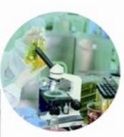新型水包水(W/W)聚合物乳液