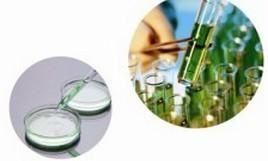 聚丙烯酰胺及其衍生物反相乳液