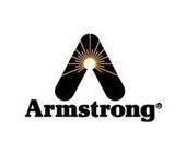 美国阿姆斯壮Armstrong阀门
