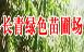 长青绿色苗圃场
