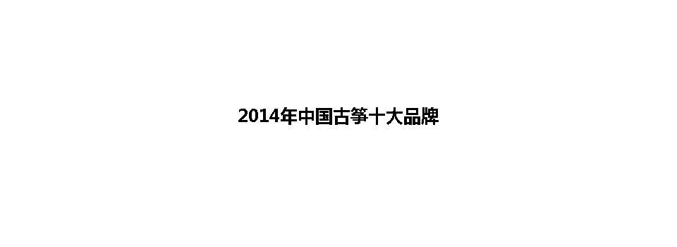 2014年中国古筝十大品牌图片