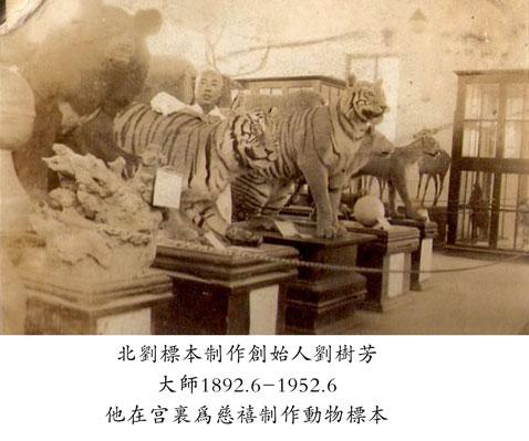 为新中国动物标本制作事业的恢复做出了积极的
