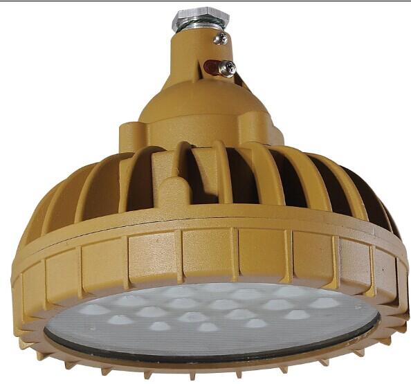 TBL5142 LED免维护防爆节能灯