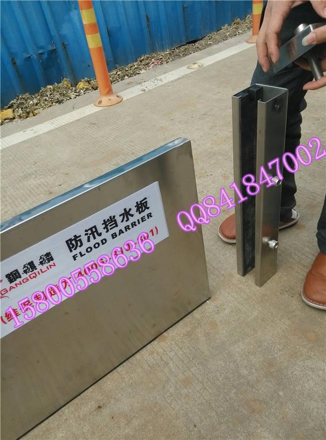 防汛挡水板/核电站机组厂房出入口防洪物资防洪门