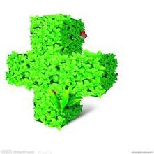 中国绿色医院建设暨可持续发展论坛