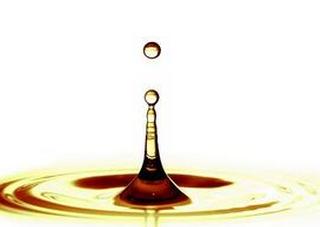 2016年(第八届)润滑油及添加剂(桐乡)技术交流会