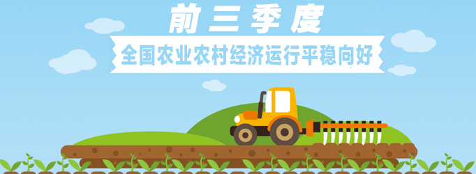 农业农村经济