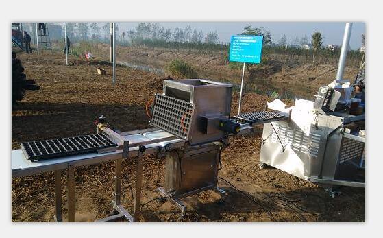 穴盘播种机 添加覆土洒水系统——常州风雷