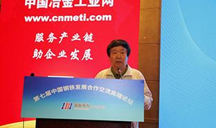 """原冶金部行业管理司司长刘树和致辞并讲解""""钢铁市场的分析""""。"""