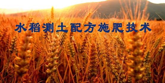 水稻测土配方施肥技术