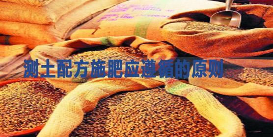 测土配方施肥应遵循的原则