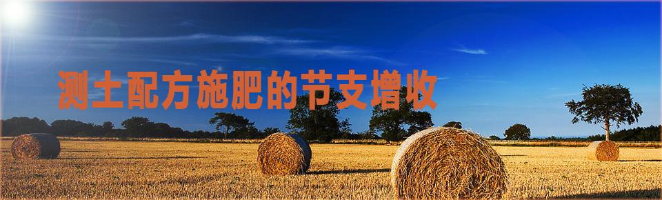 测土配方施肥的节支增收