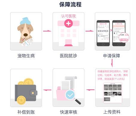 """国内首款免芯片免体检""""宠物医疗保险""""在京东商城上线"""
