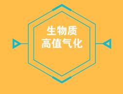 张守军:生物质高值气化产业领跑者