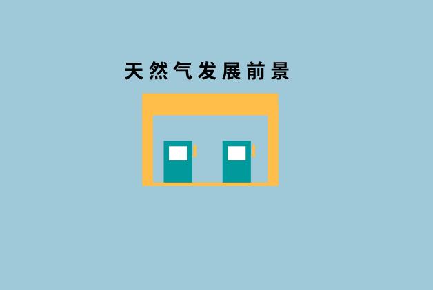 张玉清:机遇大于挑战 管网独立下天然气发展前景展望